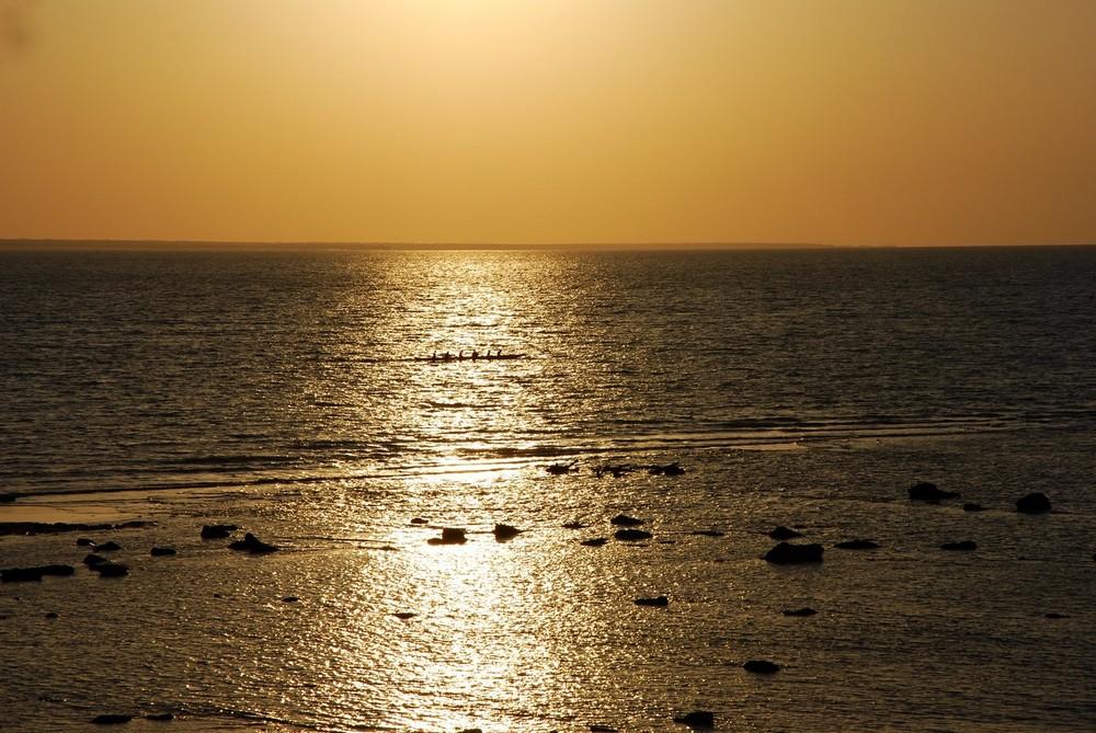 Ruderer im Sonnenuntergang