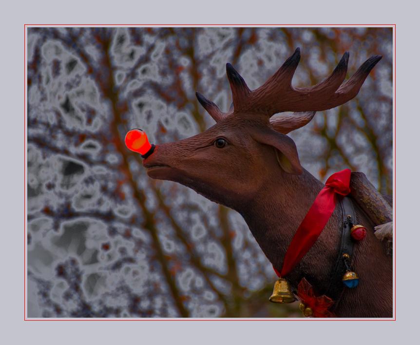 Rudolph......?