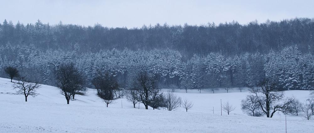 rückkehr des winters