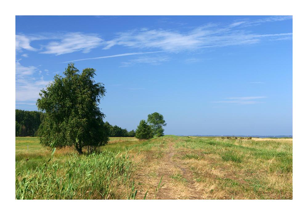 Rügener Landschaft