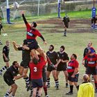 RUGBY 6