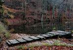 Ruhe und Stille, Herbst aktuell