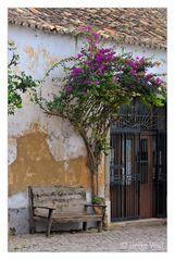 Ruheplatz in Faro