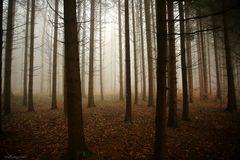 Ruhige Herbstzeit