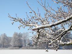 Ruhiges Winterwetter