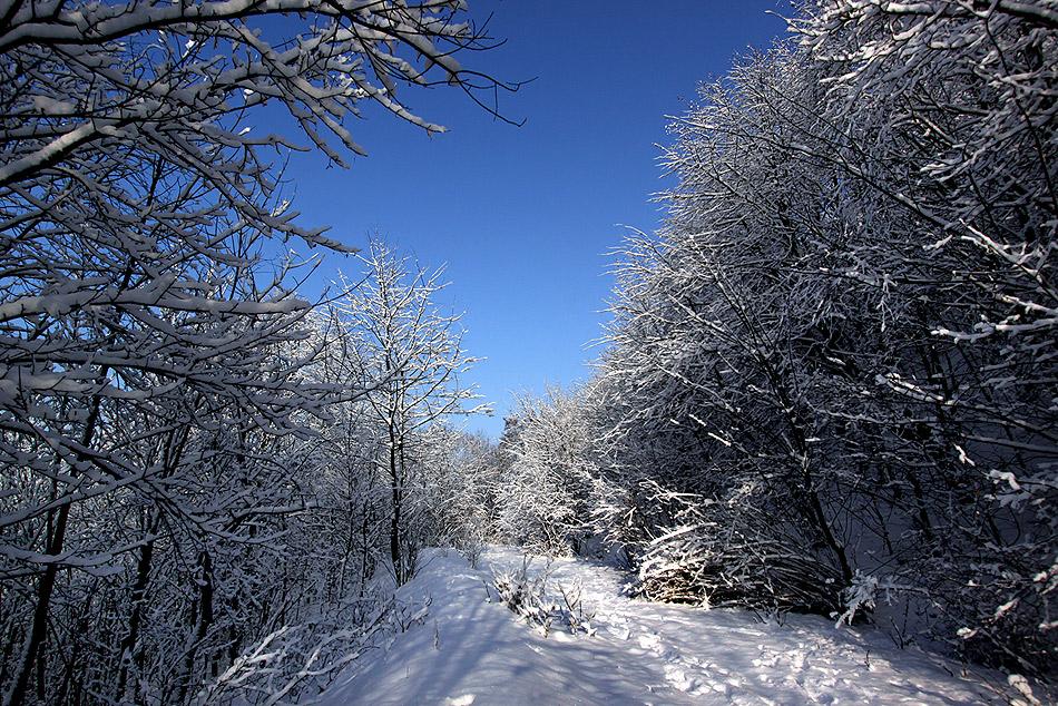 Ruhrgebiet = Winterwunderland
