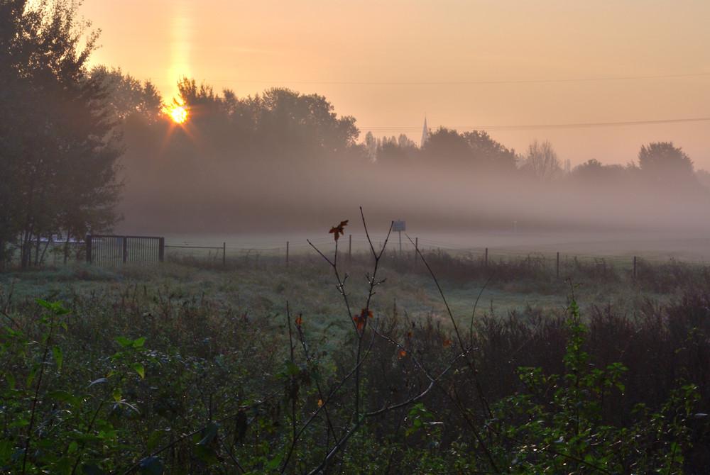 Ruhrwiesen in Essen Steele mit Nebel