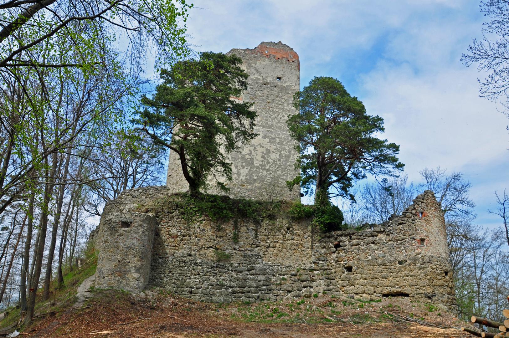 Ruine Boodmann