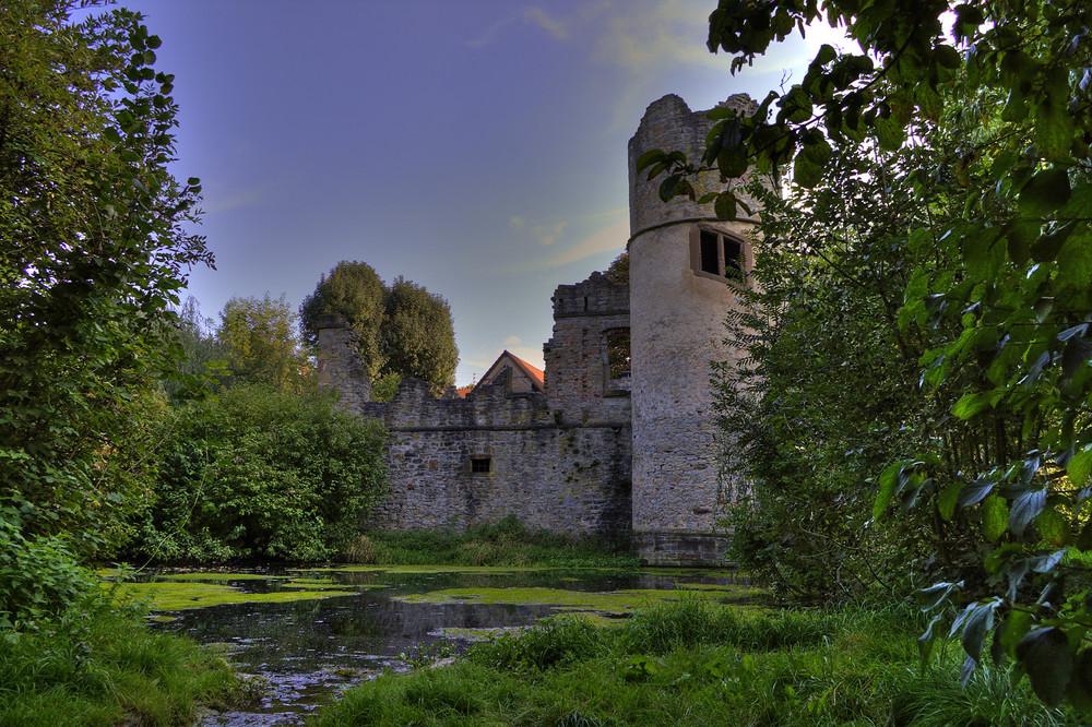 Ruine Burg Daisbach 13