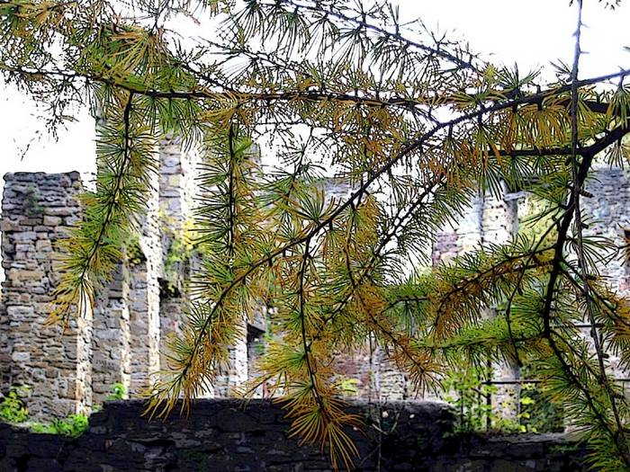 "Ruine ""Haus Weitmar"" in Bochum"