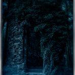Ruine im Wald