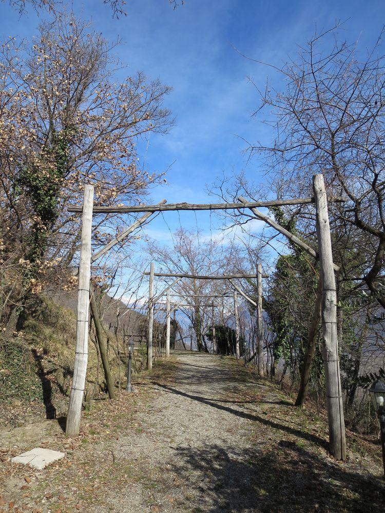 Ruine Kasatsch, 444 m