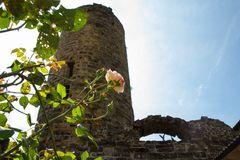 Ruine Staufeneck