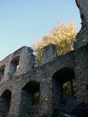 Ruinen im Spessart