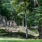 Ruinenstätte Yaxchilán, Mexico