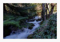 ruisseau de l'espinouse