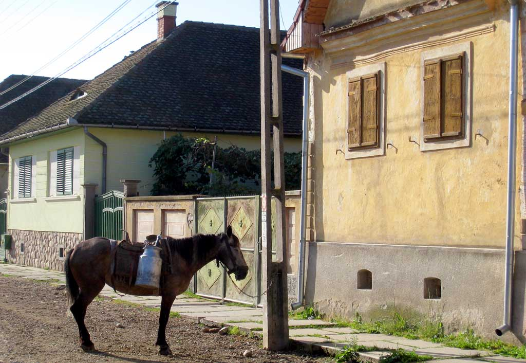 Rumänien Christian (Grossau) Milchtransport