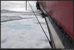 Rummms...wir sind im Eis....