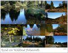 rund um Waldland Hohenroth