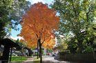 Rundgang durch Partenkirchen: es wird Herbst