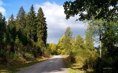 Rundwanderweg Schluchsee