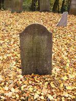 Runkel-der jüdische Friedhof (4)