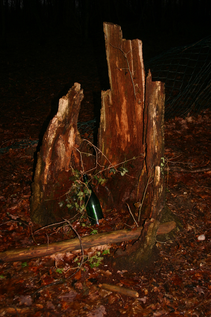 Runtergekommener Baum