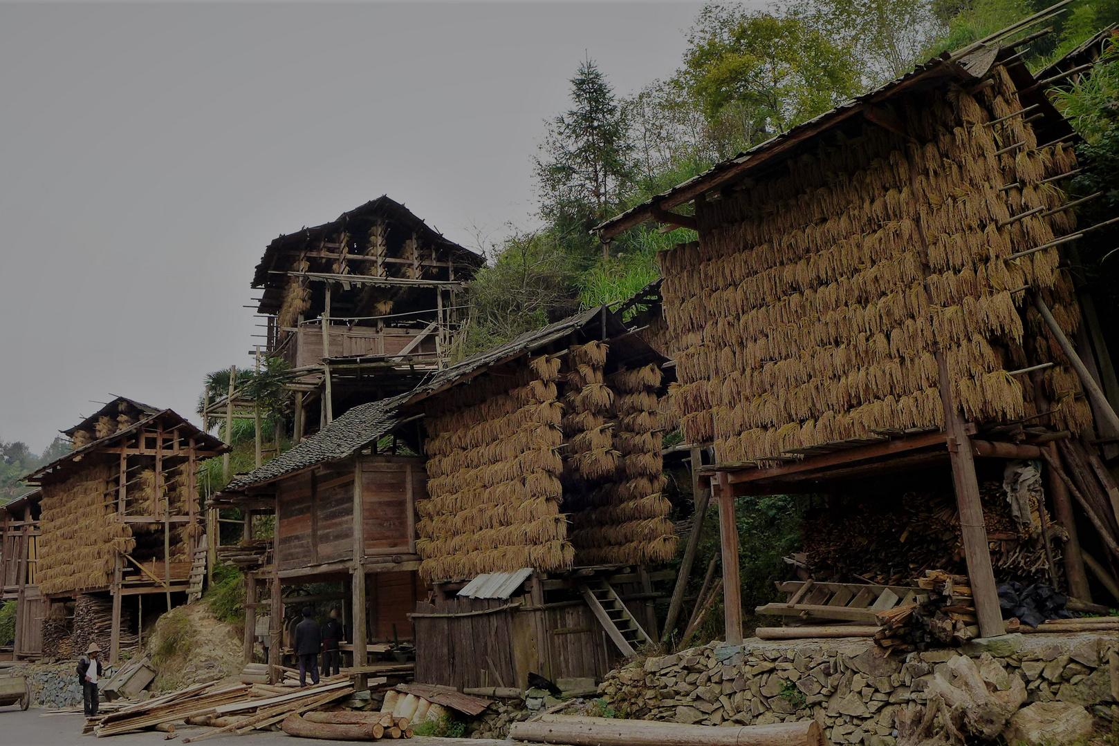 rural 1