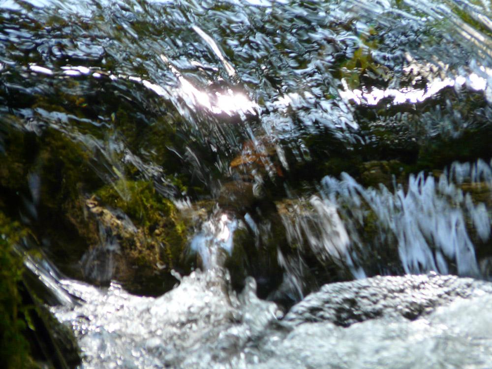 ruscelli d'acqua