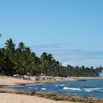 Rush Hour am Strand von Praia do Forte Version 2