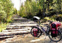 Russischer Holzweg - Strassen der Welt 4