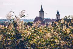 Rust am Neusiedlersee (Burgenland, Österreich)