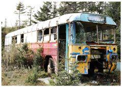 rust in peace (2)