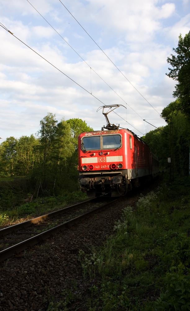 S-Bahn in der Abendsonne