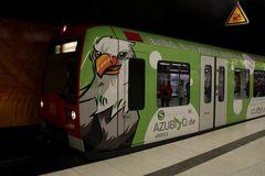 S-Bahn mit Adler-Blick