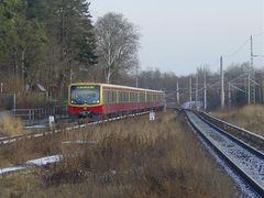S-Bahnzug aus Berlin kommend