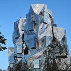 S P A C E . O D Y S S E Y  --  Gehry  __©D8947_OC++