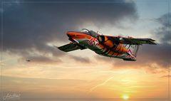 Saab -105 im Tiger look!