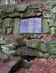 Saale-Quelle
