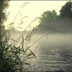 Saaleufer im Nebel