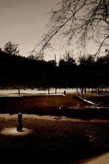 Saar-Urwald [#01]