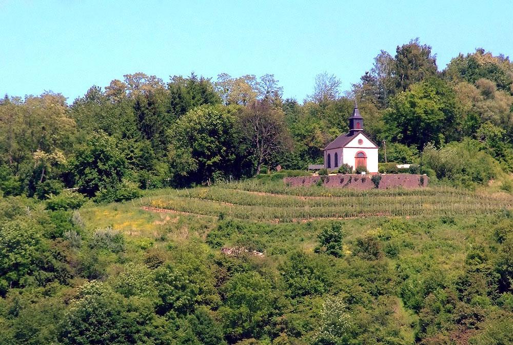 Saarländischen Landwein ....