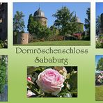Sababurg