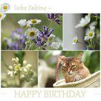 Sabine hat Geburtstag