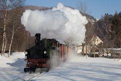 Sachsenzug im Winter (3)