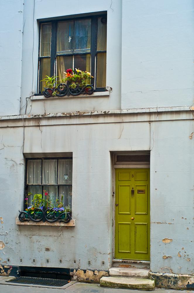 Sad house, happy flowers