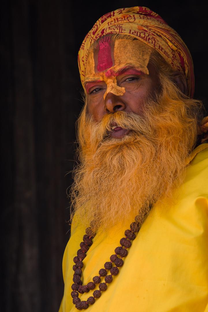 Sadhu - Heiliger Mann