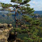 Sächsische Schweiz 2