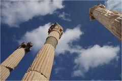Säulen in Ephesus