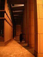 Säulen und Licht